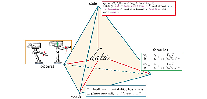 Expanding access video omnia professor nelson uses a pyramid model like this one in class in order to represent the four faces of biophysics words pictures formulas and code ccuart Images