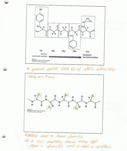 synthesisofscientificconceptsacrosscourses