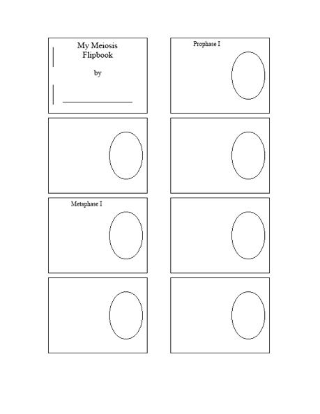 Making a lapbook for plant and animal cells wehavekids university of pennsylvania a blank ccuart Images